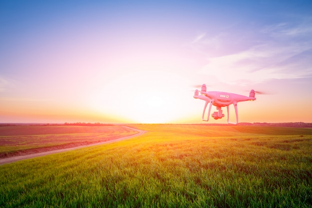 Drone quad helicóptero no campo de milho amarelo Foto Premium