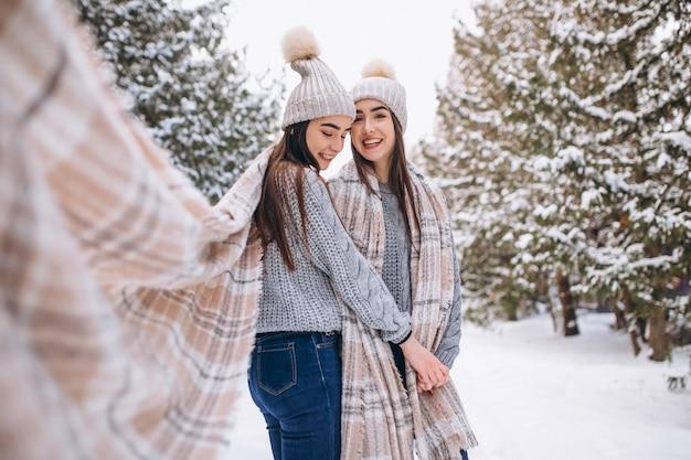 Duas meninas gêmeas juntas em winter park Foto gratuita