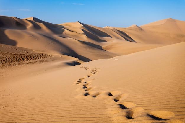 Dunas do deserto de huacachina Foto Premium