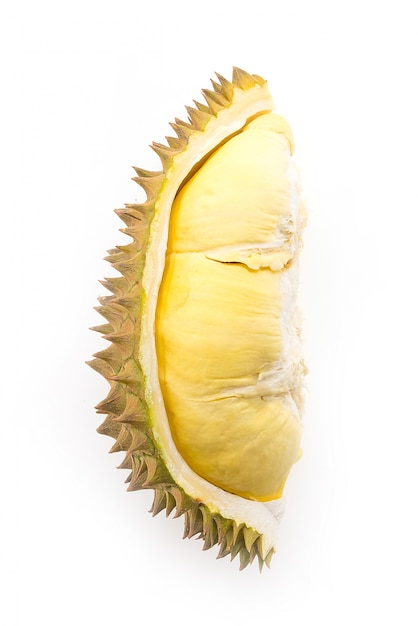 Durian, fruta, isolado Foto gratuita