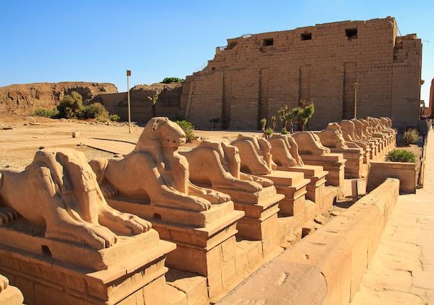 Egito, os faraós, complexo do templo de karnak. luxor Foto Premium