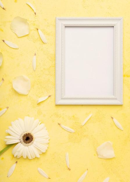 Elegante flor branca e pétalas com moldura de espaço de cópia vertical Foto gratuita