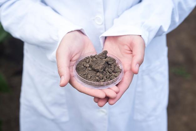 Engenheiro agrônomo segurando solo para inspeção de fertilidade Foto gratuita