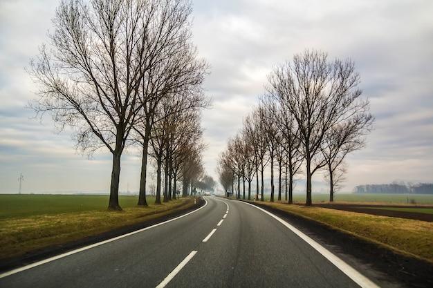 Enrolamento curvado de duas estradas secundárias da pista através das árvores. Foto Premium