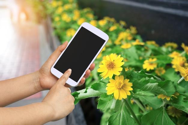 Entregue a preensão e a tela de toque para tomar uma foto com flor bonita. Foto Premium