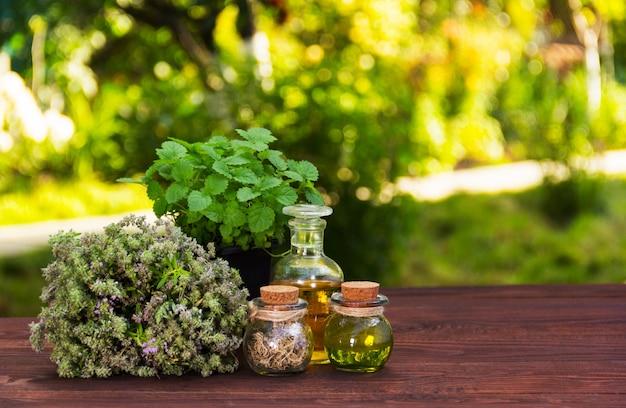 Ervas aromáticas e óleos essenciais. cosméticos naturais. medicamentos naturais. hortelã-pimenta e tomilho perfumado Foto Premium