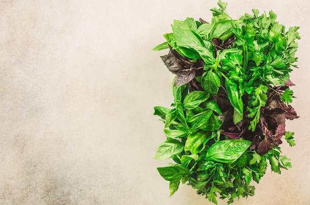 Ervas aromáticas frescas verdes - tomilho, manjericão, salsa no fundo cinzento. colagem de bandeira, quadro de comida. Foto Premium