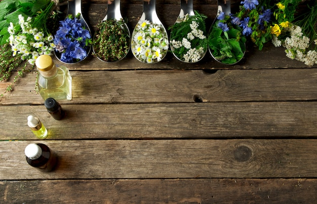 Ervas medicinais frescas. Foto Premium