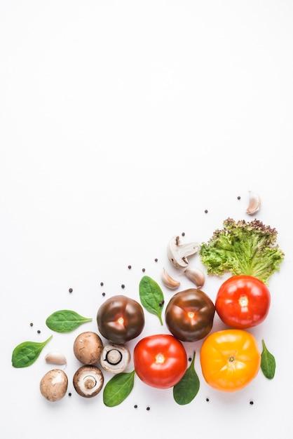 Ervas perto de cogumelos frescos e tomates Foto Premium