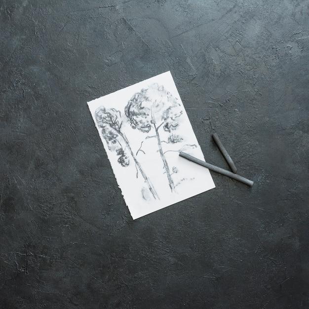 Esboço de linda árvore em papel branco com vara de carvão contra o pano de fundo preto ardósia Foto gratuita