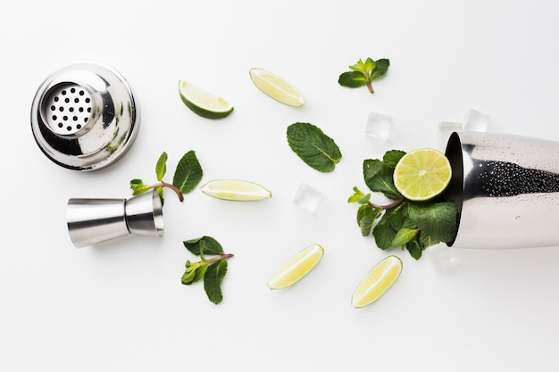 Escamar leigos de coquetéis essenciais com fatias de shaker e limão Foto gratuita