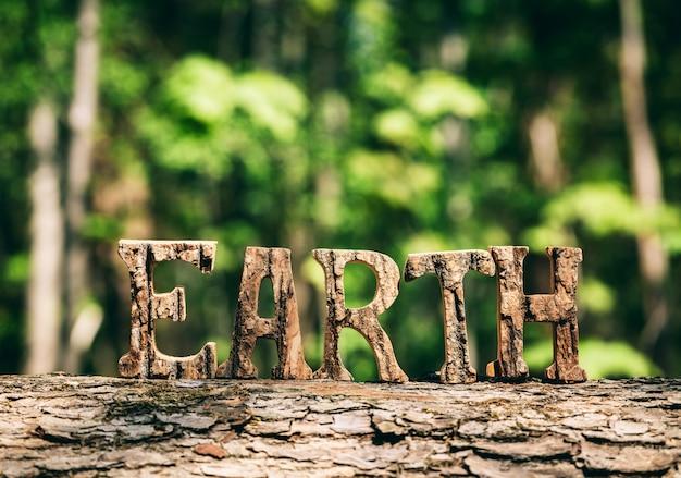 Escrita da terra feita a partir de letras de madeira na floresta Foto Premium
