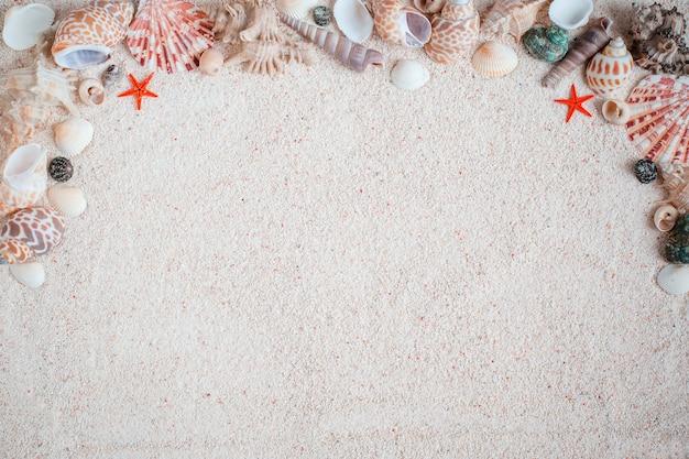 Escudos diferentes bonitos do mar na areia branca. vista de cima. como pano de fundo Foto Premium