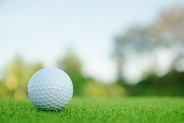 Esfera de golfe na grama verde pronta para jogar no campo de golfe. Foto Premium