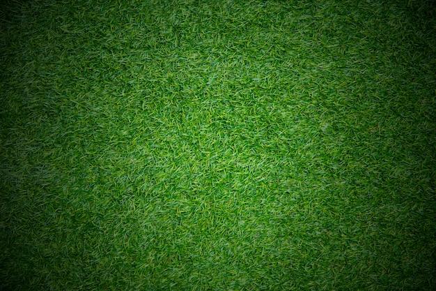 Espaço de plano de fundo do jogo campo esporte espaço grama para texto Foto Premium