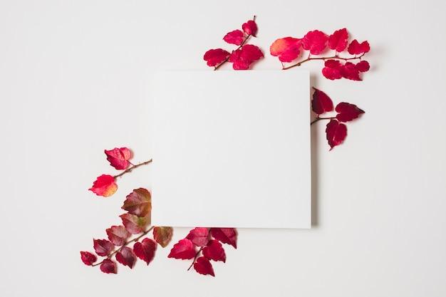 Espaço em branco da cópia com frame roxo das folhas de outono Foto gratuita