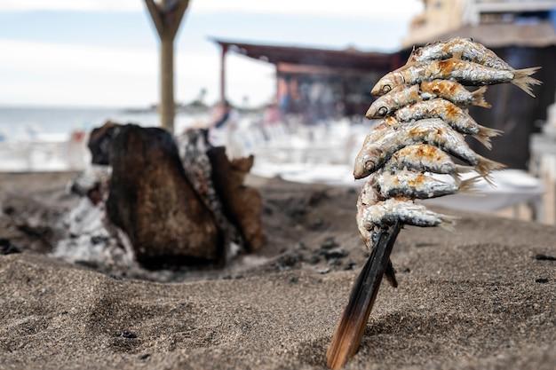 Espetos de sardinhas picadas sobre a terra grelhada na costa espanhola Foto Premium