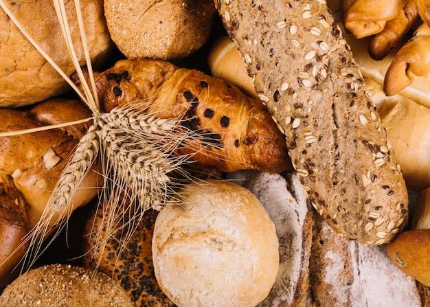 Espiga de trigo em pães integrais de pão diferente Foto gratuita