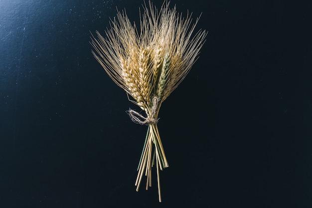 Espigas de trigo em madeira preta Foto Premium