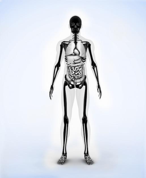 Esqueleto digital preto Foto Premium