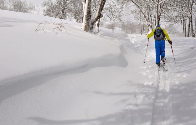 Esquiador, escalando, com, excursionar esqui Foto Premium