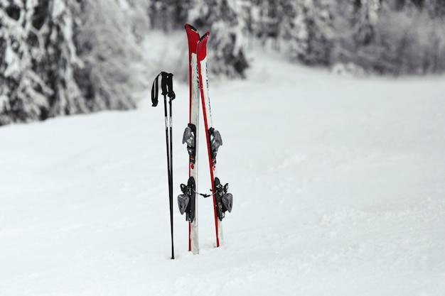 Esquis vermelhos e brancos colocam a neve na floresta Foto gratuita