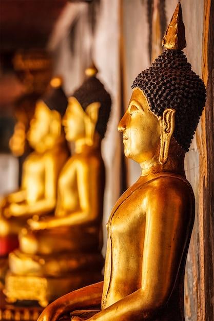 Estátuas de buda de ouro sentado na tailândia Foto Premium