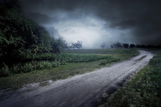 Estrada, através, a, prado, perto, poucas árvores, e, nebuloso Foto Premium