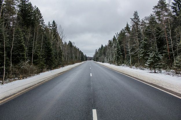 Estrada de inverno asfalto através da floresta. estrada russa. Foto Premium