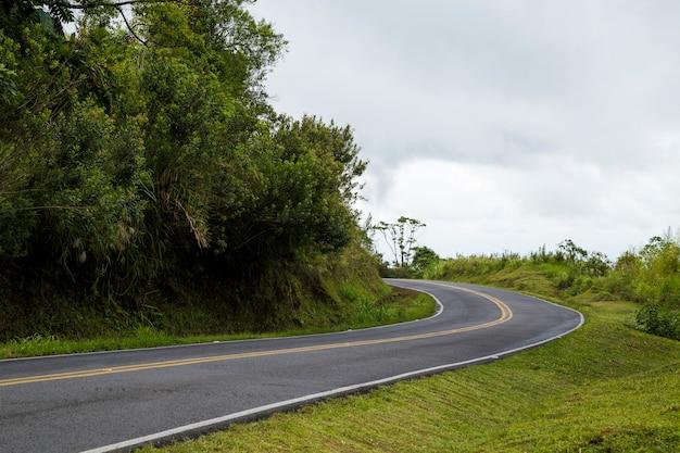 Estrada de montanha vazia perto da floresta tropical Foto gratuita