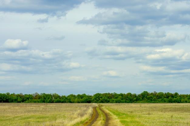 Estrada de terra contra um cinturão da floresta e céu Foto Premium