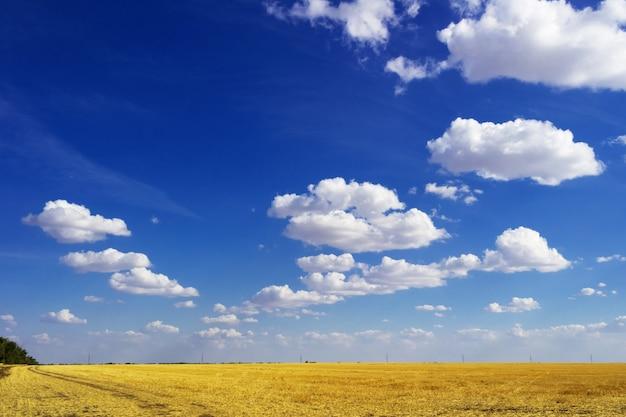 Estrada em campo e céu azul com nuvens. bela paisagem Foto Premium
