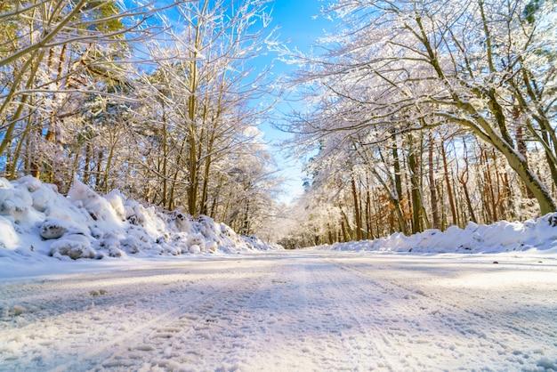 Estrada no inverno, japão Foto gratuita