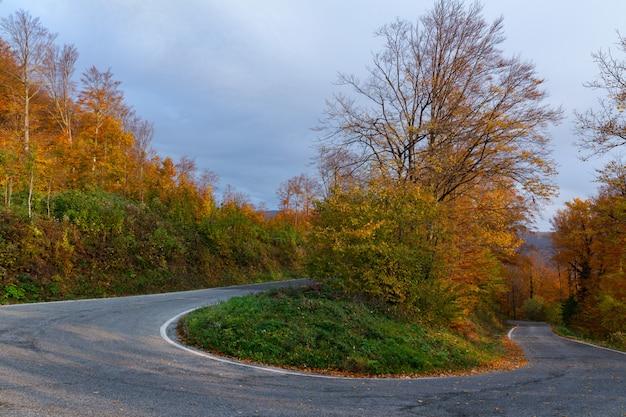 Estrada sinuosa na montanha medvednica em zagreb, croácia no outono Foto gratuita