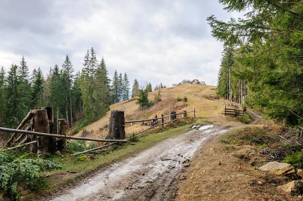 Estrada suja e casa única perto da floresta Foto Premium