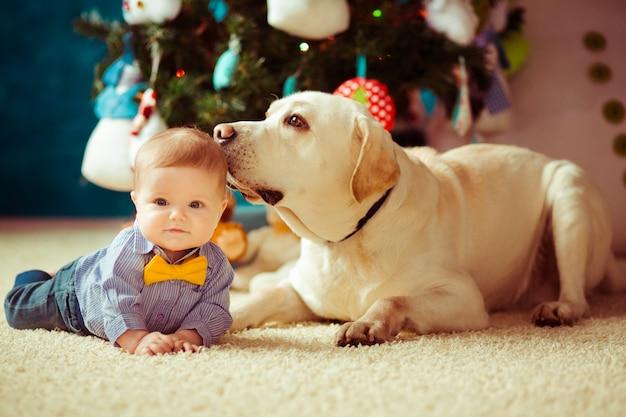 Estrela cadente mãe estilo de vida desfrutando sorrindo Foto Premium