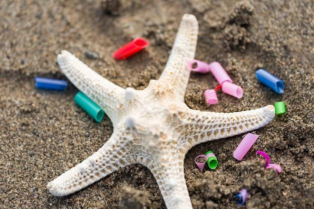 Estrela do mar com pedaços de plástico Foto gratuita