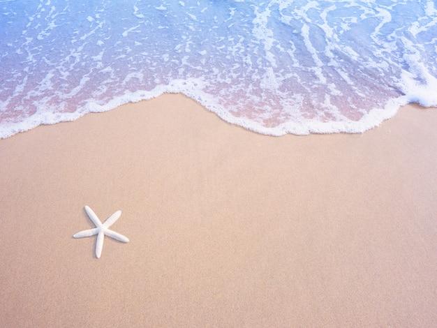 Estrela do mar pequena branca na areia e na onda de água pastel, efeito do filtro do vintage. Foto Premium