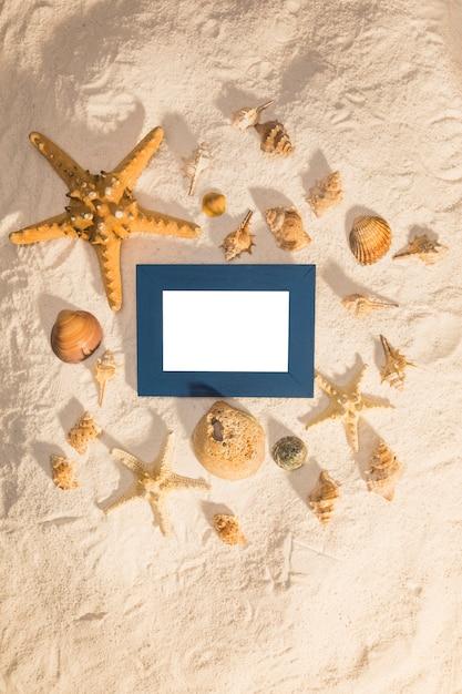 Estrelas do mar e conchas em torno do frame da foto Foto gratuita
