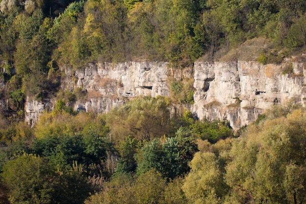 Estrutura rochosa no canyon Foto Premium