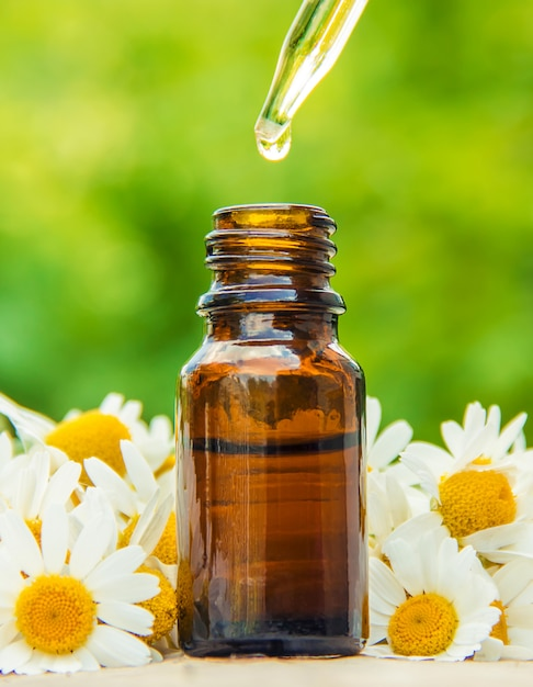 Extrato de camomila em uma pequena garrafa. natureza de foco seletivo. Foto Premium