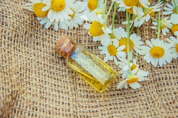 Extrato de camomila. plantas medicinais. Foto Premium