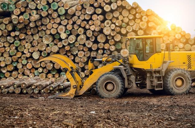 Fábrica de processamento de madeira Foto gratuita
