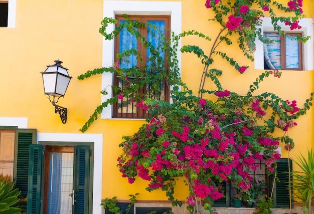 Fachadas e flores mediterrânicas de palma de maiorca em maiorca Foto Premium