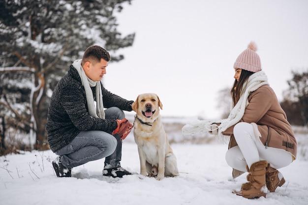 Família, andar, em, inverno, parque, com, seu, cão Foto gratuita