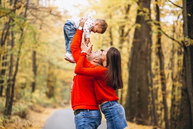 Família, com, um, filho pequeno, em, outono, parque Foto gratuita