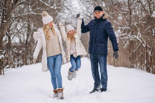 Família, junto, em, um, inverno, parque Foto gratuita