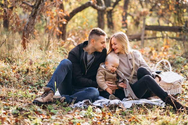 Família, pequeno, piquenique, com, seu, filho, em, outono, parque Foto gratuita