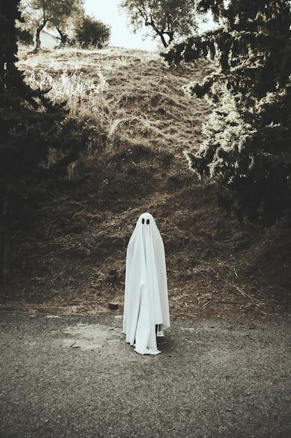 Fantasma em pé na rota Foto gratuita