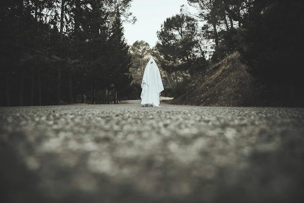 Fantasma, indo estrada rural Foto gratuita